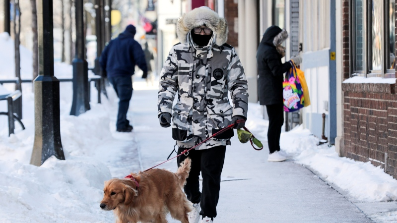 Hanji Gu takes his dog Pipixia out for a bathroom break on State Street Wednesday morning. Bitter cold temperatures moved into the Madison area Wednesday Jan. 30, 2019 bring the temperatures to 20 below zero. (Steve Apps/Wisconsin State Journal via AP)