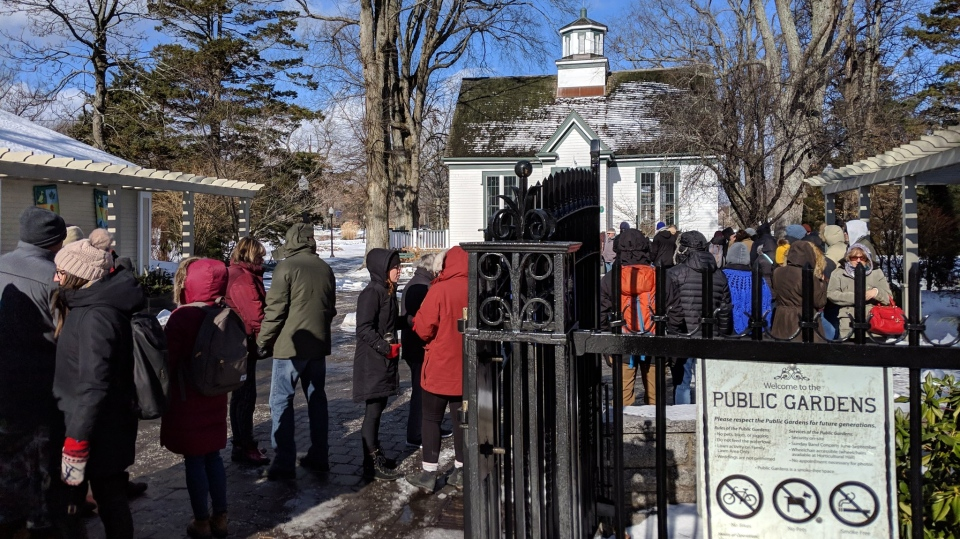 Haligonians line up for a chance to take home a free seed from Halifax's famed agave plant on Jan. 31, 2019.