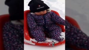 This baby is not happy to be tobogganing