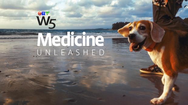 W5 Medicine Unleashed