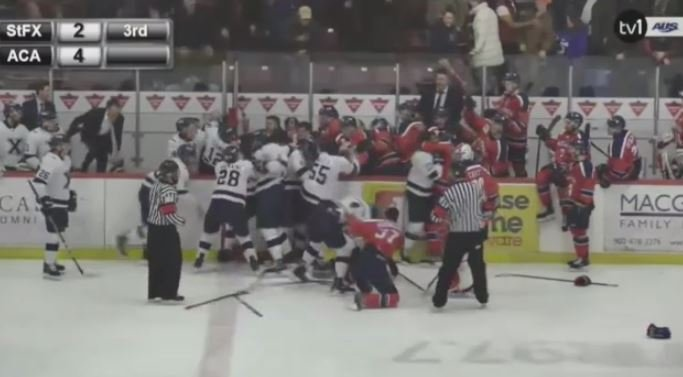 An Atlantic University Sport men's hockey game in Wolfville, N.S. became heated as the Acadia Axemen and St. FX X-Men were involved in a brawl on Feb. 2, 2019. (YouTube)