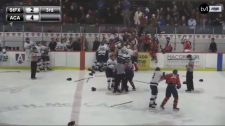 hockey brawl,
