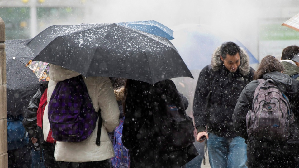 Pedestrians shelter under their umbrellas as a snowstorm descends on Toronto on Thursday, April 11, 2013. (Frank Gunn / THE CANADIAN PRESS)