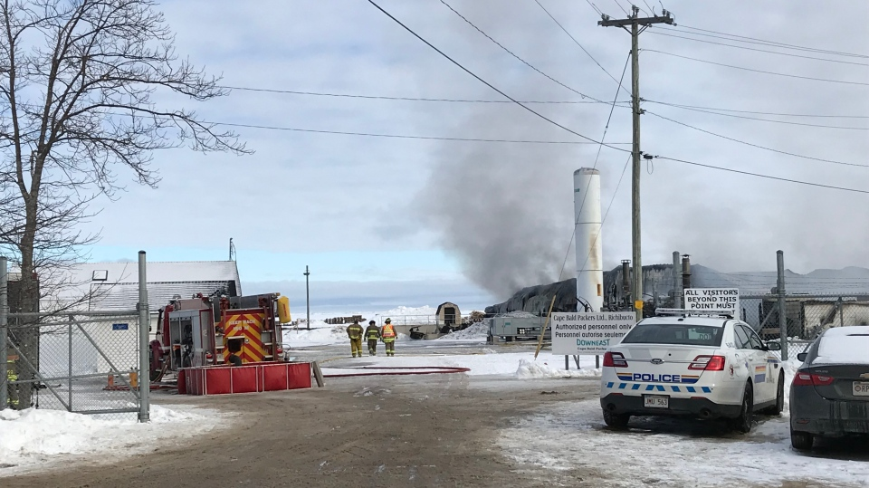The Cape Bald Packers seafood processing plant in Bedec, N.B., was destroyed by fire on Feb. 7, 2019.