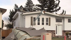 Windstorm wreaks havoc on South Coast