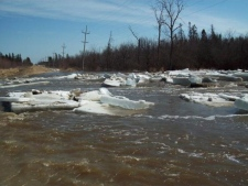 Ice jam on Thames River near Poppe Road