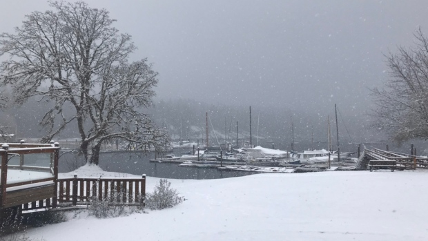 Snowfall warning issued from Campbell River to Duncan