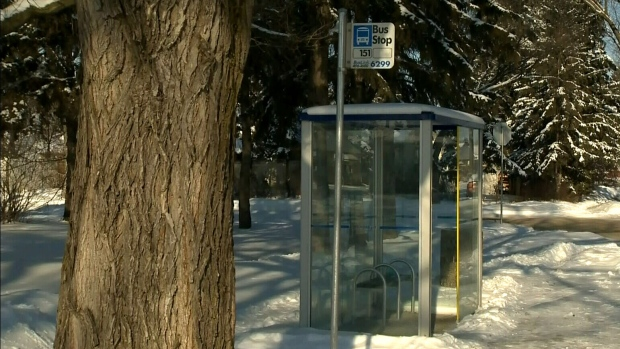 'Truly a hero': Bus driver saves man in distress during -40 wind chill