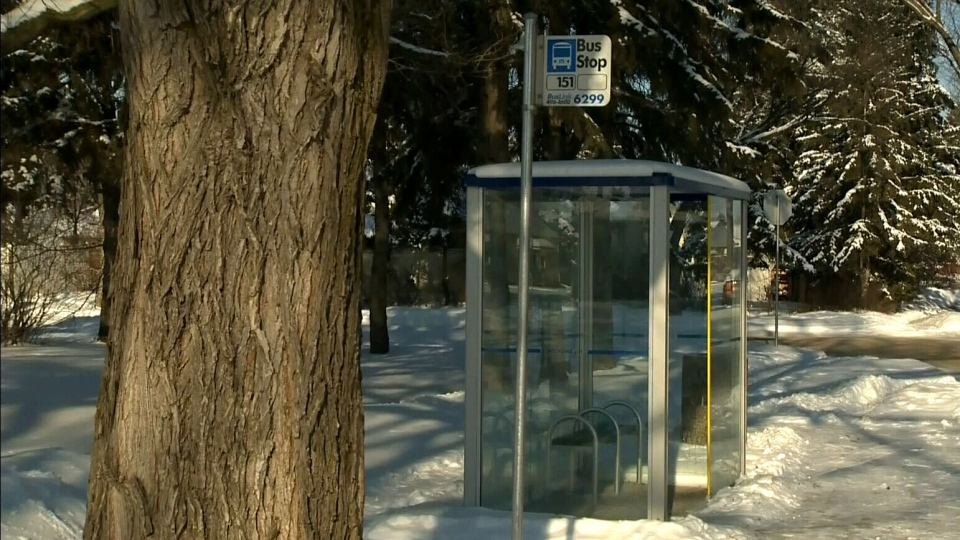 A bus driver noticed a man slumped over at this bus shelter in Edmonton and took him onto his bus to warm up while waiting for paramedics to arrive.