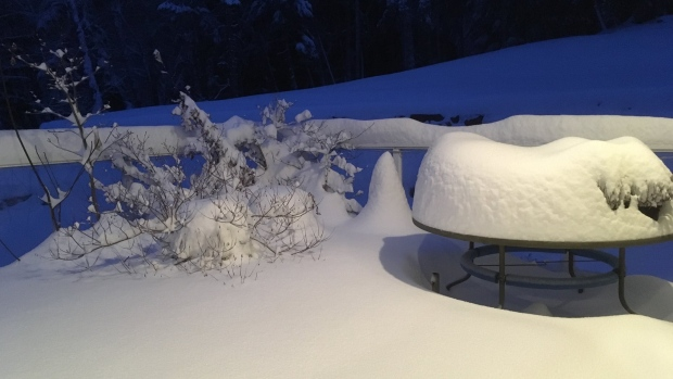 Salt Spring Island residents woke up to a fresh blanket of white stuff covering their patio Monday morning, Feb. 11, 2019. (Twitter/@Richard77996841)