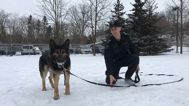 Det. David Dickinson works with the Toronto Police Service's canine unit. (Tracy Tong/CTV News Toronto)