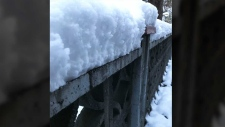 Snow in East Van