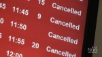 N.S. sees cancelled flights, school