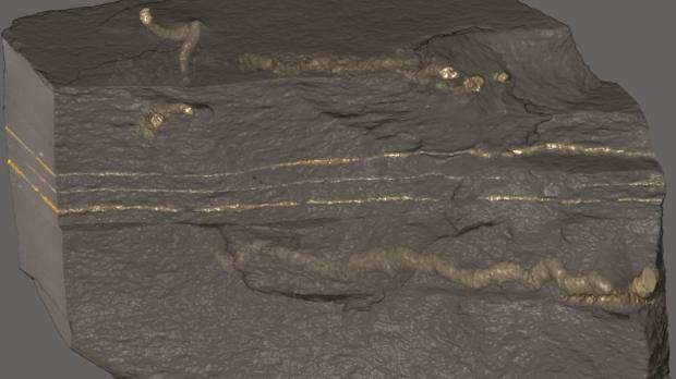 unimaginably ancient fossils