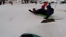 Video of rat colliding with toboggan goes viral