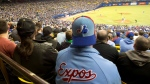 Fans wear Montreal Expos uniforms as they watch the Toronto Blue Jays in a pre-season baseball game against the New York Mets Friday, March 28, 2014 in Montreal. (THE CANADIAN PRESS/Ryan Remiorz)