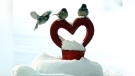 Love is in the air..and snow. Photo by Jeannette Greaves.