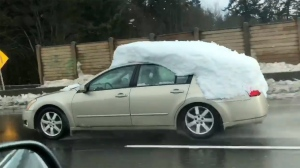 A car covered with what appears to be a foot of snow on the roof and rear windshield is seen driving on the Trans-Canada Highway near Langford. Feb. 15, 2019. (Candace Verners)