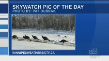 Skywatch Weather at Six, Feb. 15