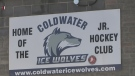The Canadian Premier Junior Hockey League (CPJHL) is forced to fold one of its franchises after disciplinary issues with players.