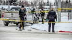 crime scene of Grande Prairie altercation