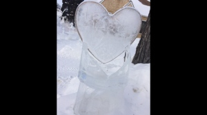 A Crescentwood area homeowner has created some mystifying ice sculptures. Photo by: Jamie Dowsett