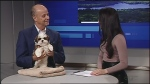 Sudbury breeder Richard Paquette joins Rebecca Nobrega in studio with a furry friend to talk about this year's Westminster Dog Show.