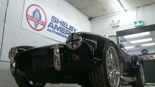 CTV Windsor: Shelby certified