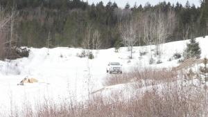 Winter fun turns scary for one New Brunswicker