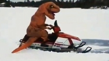 Woman takes unique snowmobile ride