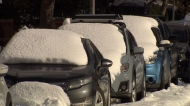 More snow expected for the Lower Mainland