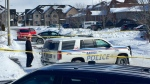 Barrie police investigate an early morning homicide on Penvill Trail on Tues., Feb. 19, 2019 (CTV News/Steve Mansbridge)