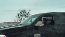 Driver falls asleep in the middle of the road