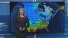 web forecast Feb. 19