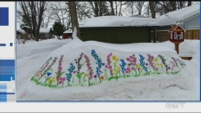 Northerners are using nature's blank canvases to create colourful artwork. We want to see YOUR #snowart.