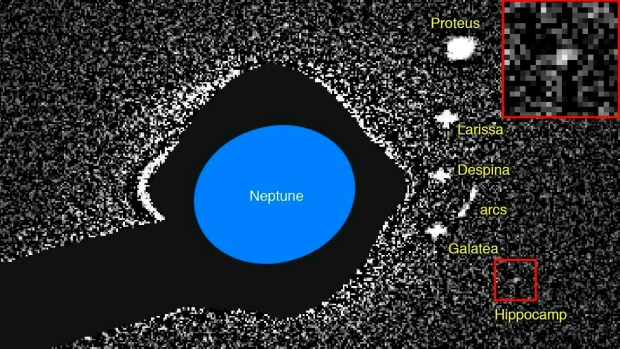Scientists build picture of super-fast mini moon of Neptune
