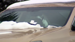 Vehicles that are not moved from the snow routes during a ban could receive a $120 parking ticket and tow.