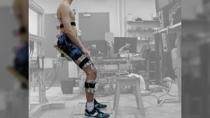 Using a series of muscle sensors, researchers examine if hybrid sit-stand postures were a good compromise between sitting and standing (Mamiko Noguchi, University of Waterloo)