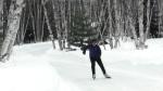 New skate path opens at Sudbury's Kivi Park