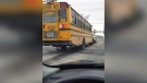 School bus stopped on train tracks caught on video