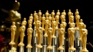 Twenty-four karat gold-dusted Valrhona Illanka Chocolate Oscars are pictured at the press preview for the 91st Academy Awards Governors Ball, Friday, Feb. 15, 2019, in Los Angeles. (Photo by Chris Pizzello/Invision/AP)