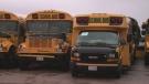 school bus tracks two