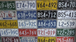 A snapshot of some of the vintage plates in Joe Diebold's garage.