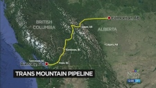 Energy Board recommends pipeline expansion