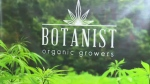 Botanist Organic Growers Corp. plans to start working toward its first crop immediately.