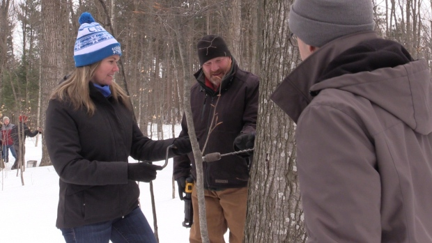 Visitors tap trees at Steamy Kettle Sugar Bush on Saturday February 23, 2018 (Roger Klein/CTV News)