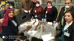 The remains were discovered by an X-ray monitor at the airport, the antiquities ministry said in a Facebook post. (Ministry of Antiquities Facebook page)