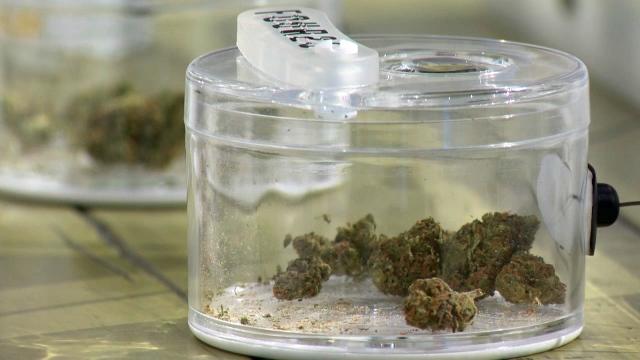 Marijuana display at a 420 Premium Market location in Calgary