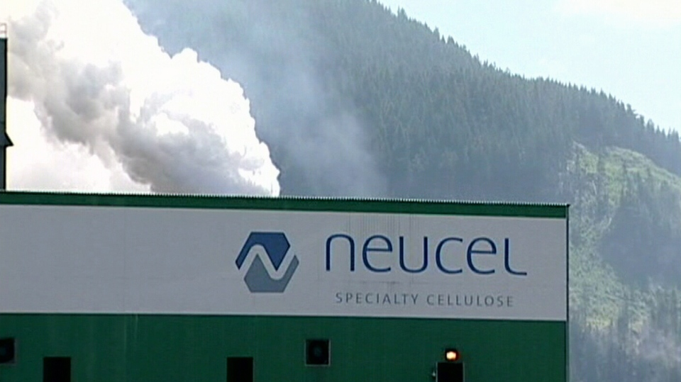 The Neucel Cellulose Products pulp mill in Port Alice is shown in this 2008 file photo.