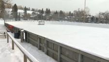 calgary, accessible, disabled, sledge hockey, spor